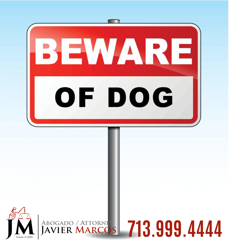 Dog bite claim | Attorney Javier Marcos