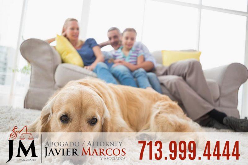 Dog bite claim | Attorney Javier Marcos 713.999.4444