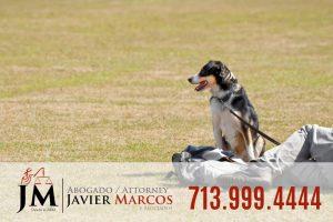 Dog leash laws | Attorney Javier Marcos 713.999.4444